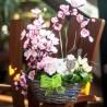 jarní košík, rozkvetlé větvičky třešní a krokusy