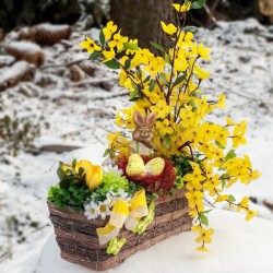 proutěný košík, aranžovaný v tónech žluté a bílé barvy, umělé větvičky zlatého deště a jarních kvítků, doplněno keramickým zajíč