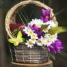 dekorace jaro, košík z vrbového proutí, plný fialových krokusů a sedmikrásek