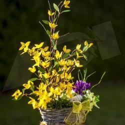 jarní košík, větvičky umělého zlatého deště, v proutěném patinovaném košíku, doplněno jarními květy